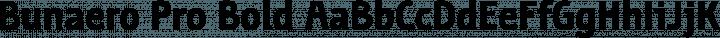 Bunaero Pro Bold free font
