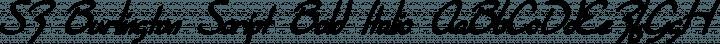 SF Burlington Script Bold Italic free font