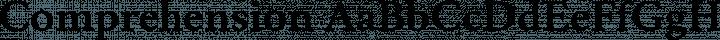 Comprehension font family by Hanken Design Co.