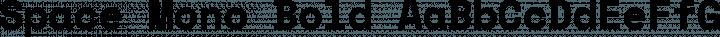 Space Mono Bold free font