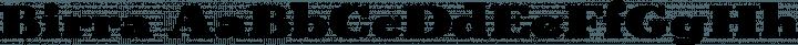 Birra font family by Darden Studio