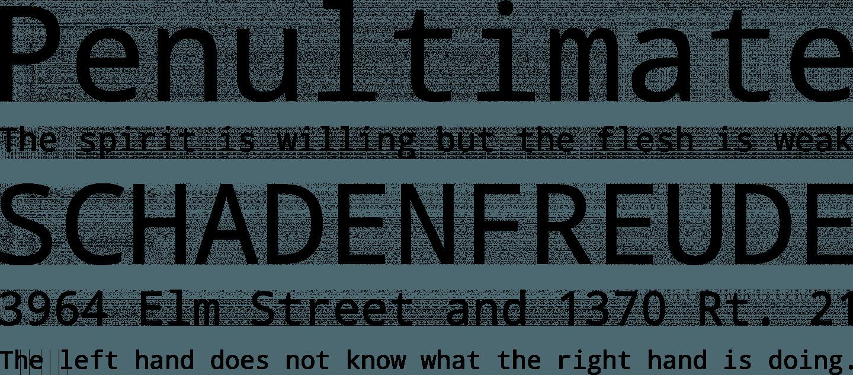 Droid Sans Font Free Download