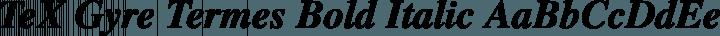 TeX Gyre Termes Bold Italic free font