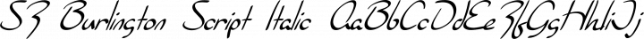 SF Burlington Script Italic free font