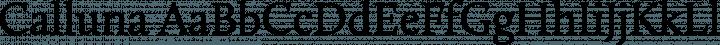 Calluna font family by Exljbris