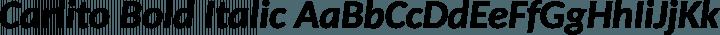 Carlito Bold Italic free font