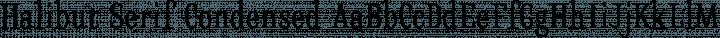 Halibut Serif Condensed free font