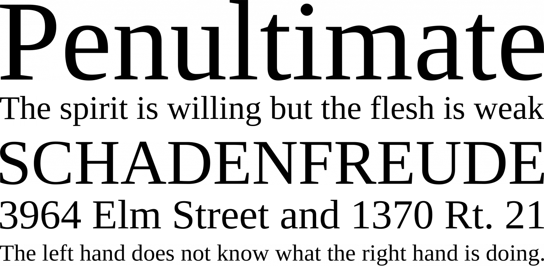 police liberation serif